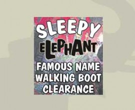 sleepy-elephant