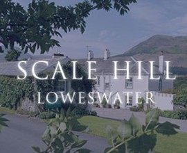 scale-hill