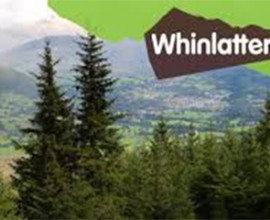 whinlatterforest